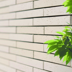 松江市東朝日町の家事楽な家でおしゃれなデザインクロスのあるお家は、クレバリーホーム 松江店まで!