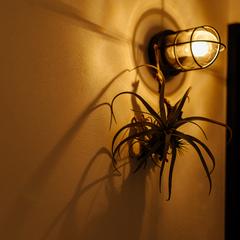おしゃれな照明をお家のアクセントに/四国中央市「紅と真果の家」