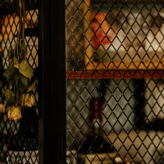 収納もデザイン性を考えてオシャレに/四国中央市「紅と真果の家」
