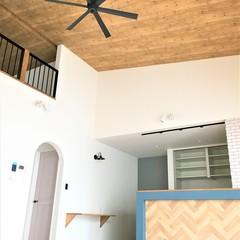 八尾市で建てる勾配天井+ロフトのある平屋のお家