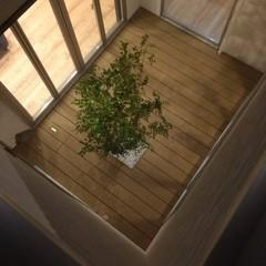 家の中心に配置された中庭のナチュラルなウッドデッキ