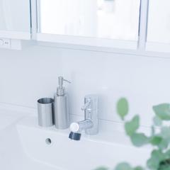 美しい規格住宅の洗練されたシンプルな洗面所